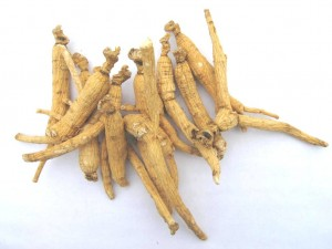 ginseng-organic-300x225